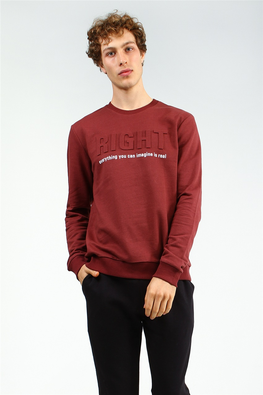erkek Bordo regular     sweatshirt